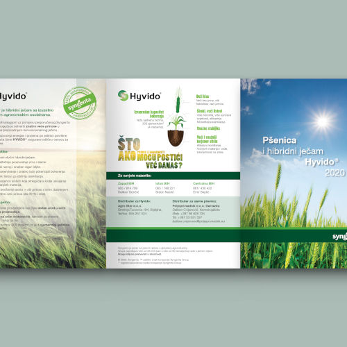 flyer_with_information_about_wheat