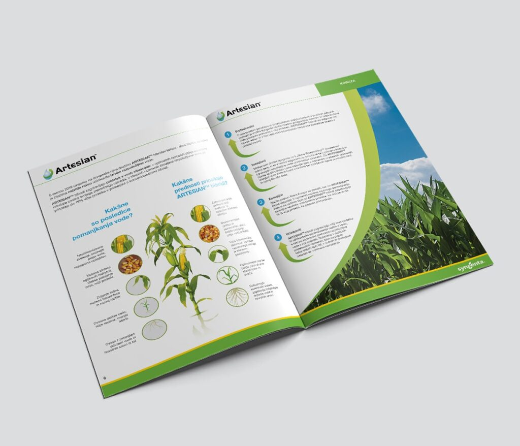 promotional-brochure-spread-1