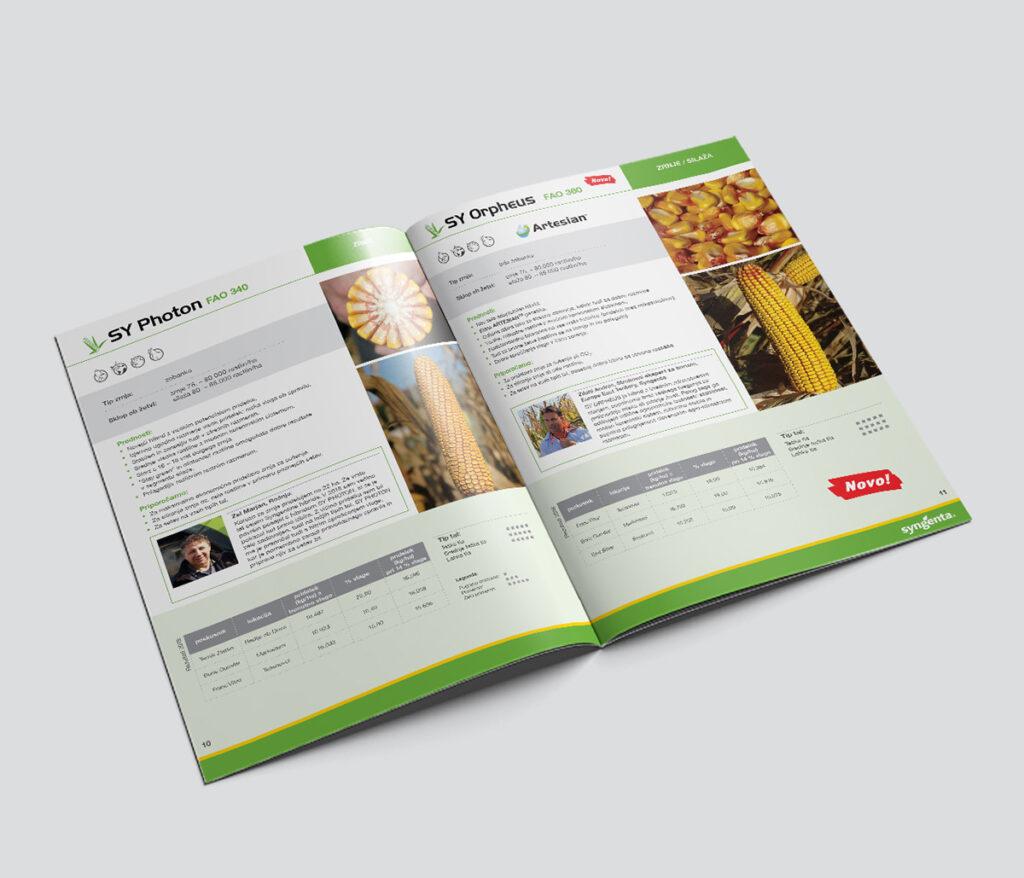 promotional-brochure-spread-2