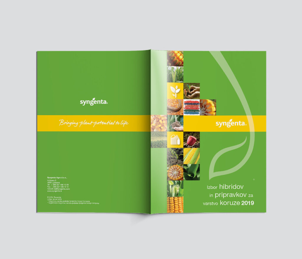 promotional-brochure-spread-front-and-back